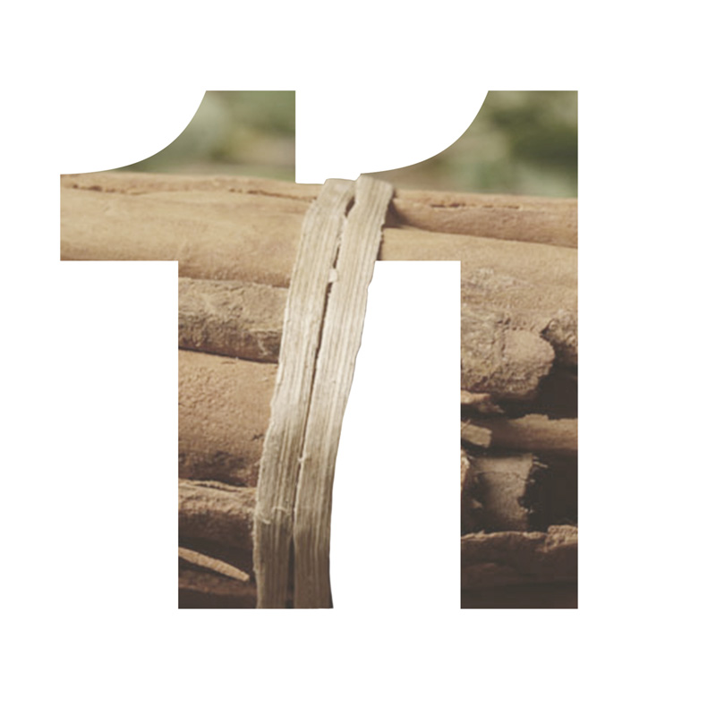 11 Sandal Wood
