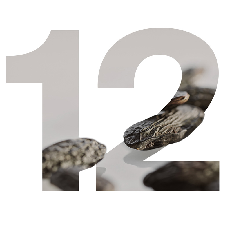 12 Tonka Bohne